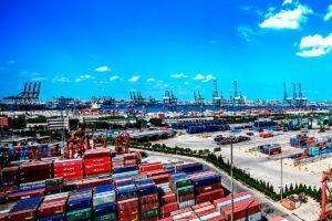 Коронавирус оказывает сильное давление на европейских экспортеров древесины