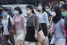 Малайзия закроет пеллетные заводы из-за карантина, связанного с коронавирусом