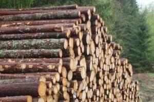 Резкое снижение цен на круглый лес в Норвегии в январе