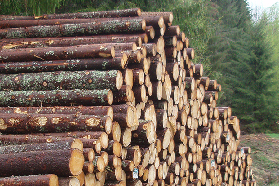 Цены на круглый лес в Норвегии значительно упали