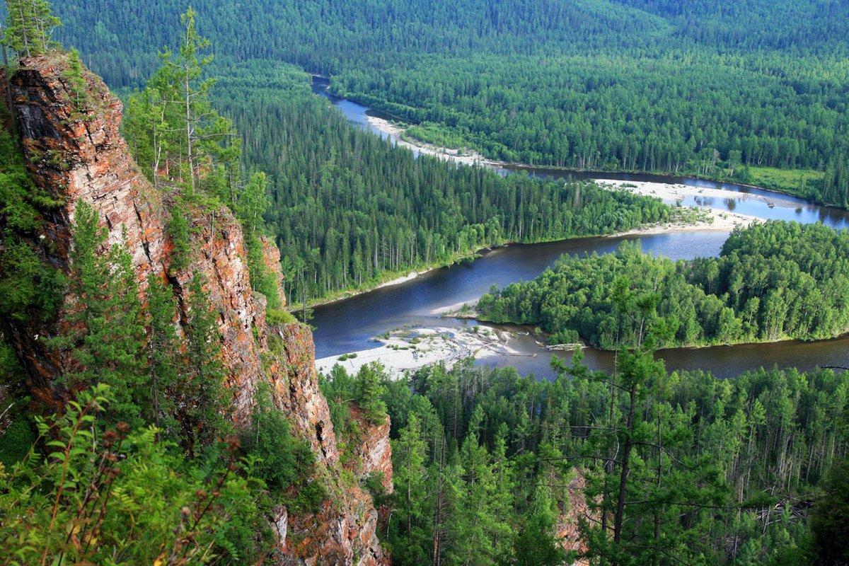В 2020 г. «Рослесинфорг» в два раза увеличит площадь непрерывного дистанционного мониторинга лесов Сибири