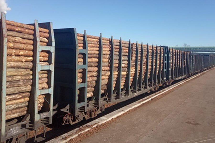 Светлогорский ЦКК отрабатывает новую схему поставки сырья