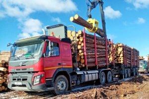 Segezha Group закупила новые лесовозы и внедорожники для вологодских лесозаготовителей