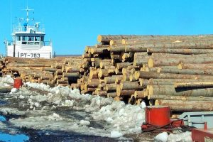 Лесосибирский ЛДК №1 получил первую партию круглого леса по воде