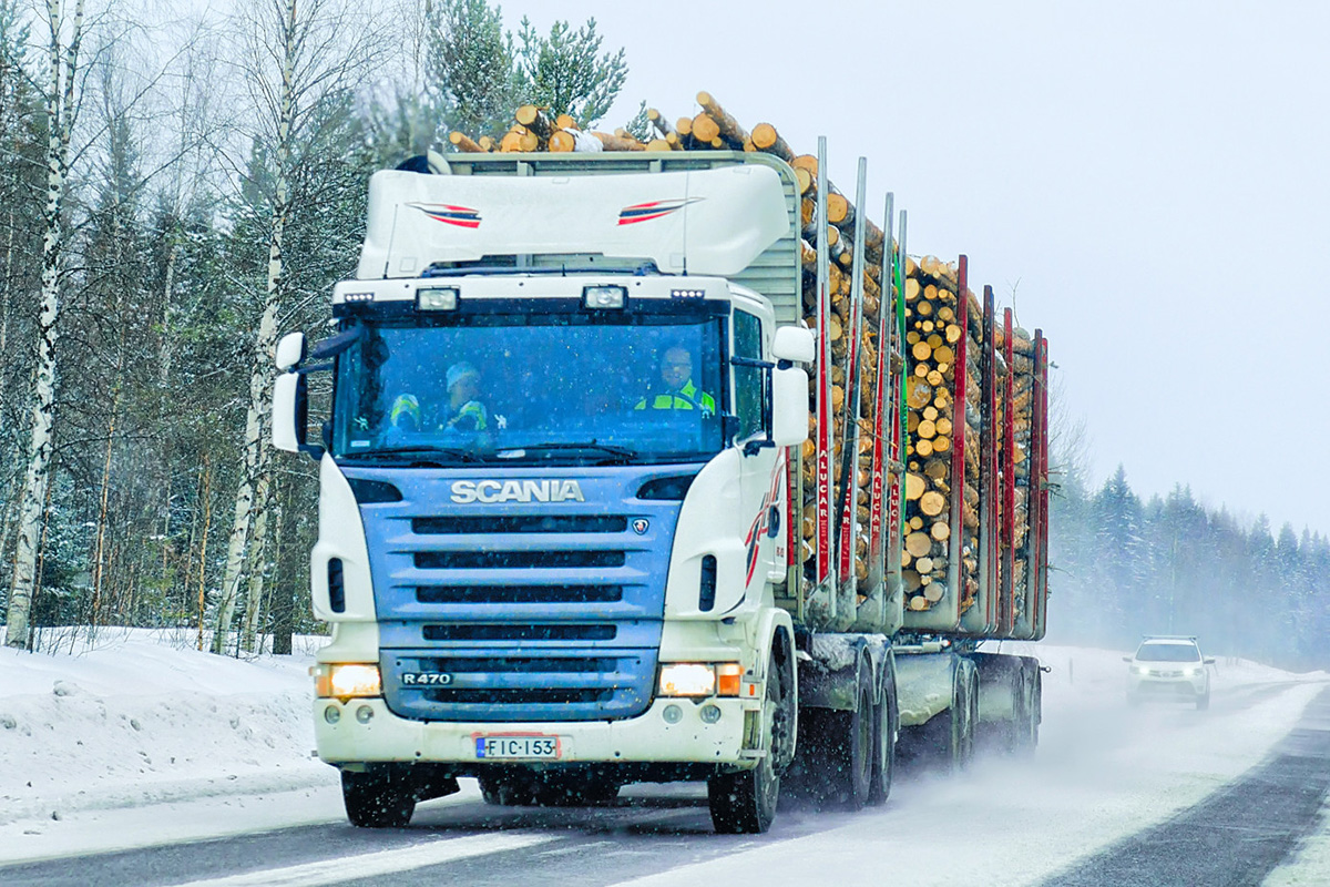 В феврале 2020 г. Финляндия сократила заготовку древесины на 28%