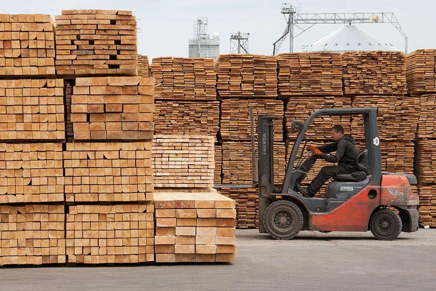 Украина сократила экспорт древесины более чем на семь процентов