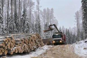 В зимний сезон 2020 г. Группа «Титан» вывезла 1,6 млн м3 древесины