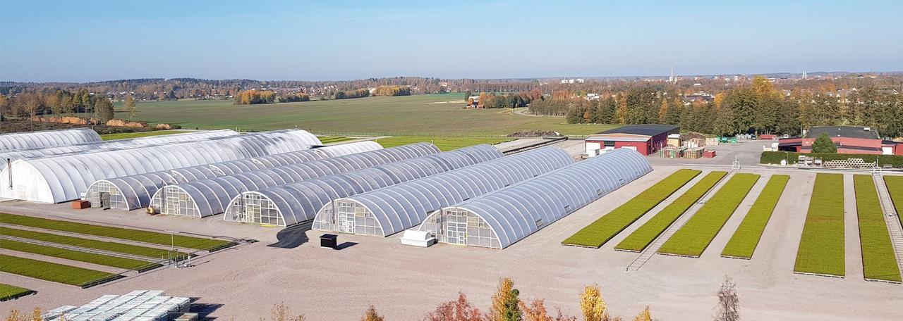 Шведская компания Skogsplantor инвестирует 100 миллионов шведских крон в модернизацию заводов по производству посадочного материала с ЗКС