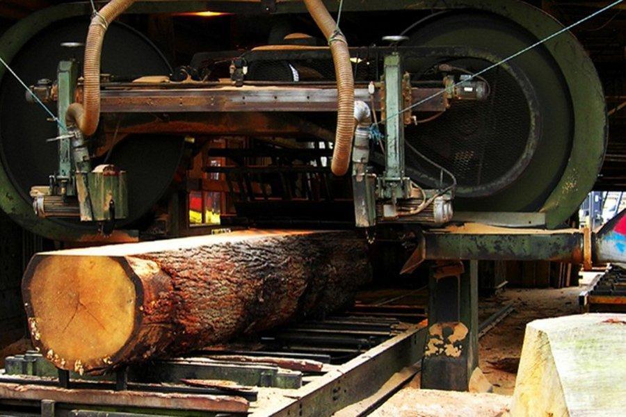 Vastern Timber частично возобновляет деятельность