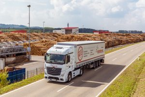 Некоторые немецкие лесопромышленные компании считают текущее состояние бизнеса удовлетворительным