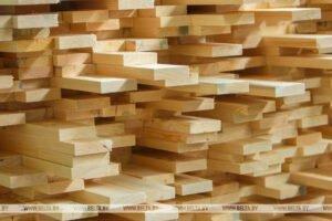 Великобритания и Канада заинтересованы в покупке белорусской древесины через биржу