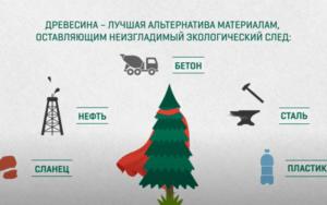 ВИДЕО: из дерева можно сделать все, что раньше делали из нефти
