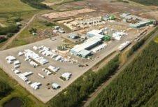В 1 кв. 2020 г. выручка Conifex Timber снизилась на 54%
