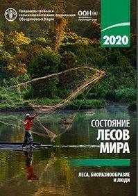 Состояние лесов мира 2020