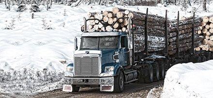 В США отложили решение по снижению пошлин на канадскую хвойную древесину