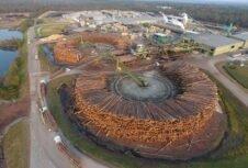 Canfor объявляет о закрытии лесопильного завода и сокращении производства целлюлозы.