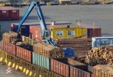Латвийский экспорт круглого леса в марте на треть меньше, чем в 2019 году