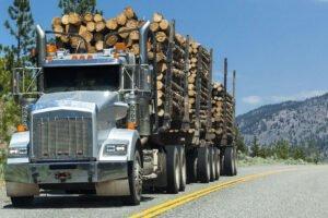 Пандемия COVID-19 может стать возможностью возродить лесную промышленность в Британской Колумбии