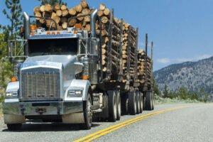 Американские лесозаготовительные компании возражают против канадских программ помощи лесной промышленности