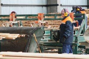 Read more about the article Австрия: лесопильный сектор хочет импортировать меньше бревен