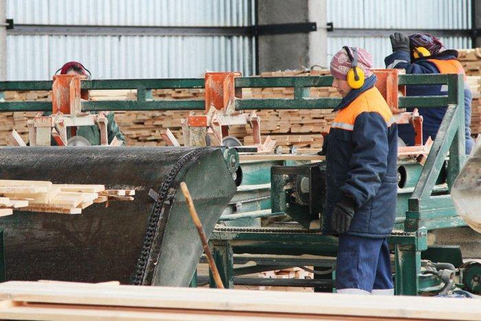 Австрия: лесопильный сектор хочет импортировать меньше бревен