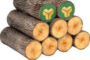 В январе-апреле 2020 г. объем реализации круглого леса на Белорусской товарной бирже вырос на 13%