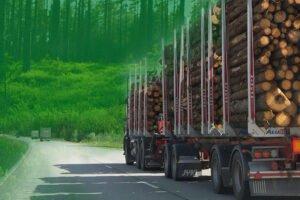 Закупки круглого леса в Финляндии в январе-апреле 2020 сократились на 3 млн. м3