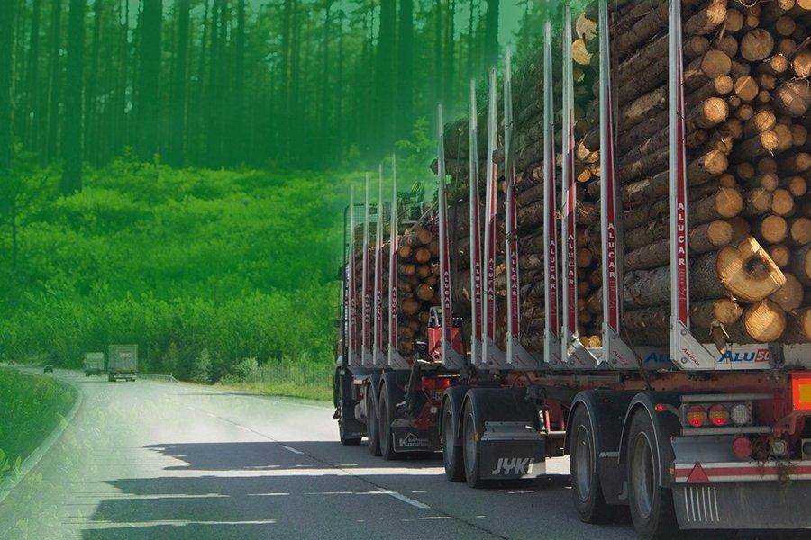 You are currently viewing Закупки круглого леса в Финляндии в январе-апреле 2020 сократились на 3 млн. м3