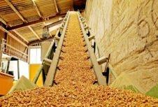 Испания: производство пеллет в будущем увеличится