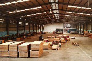 США заявляют, что импорт фанеры из Вьетнама может обойти пошлины на китайские товары