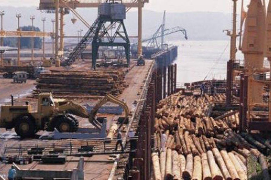 В Китае отмечается более слабый спрос на круглые лесоматериалы хвойных пород