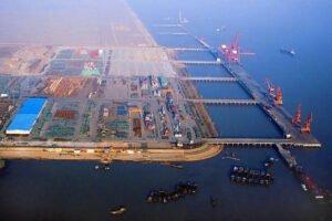 Поставки ели из Европы в Китай нарушены из-за нехватки контейнеров