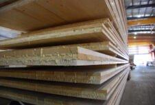 Первый склад из массивной древесины строится на острове Ванкувер в Канаде