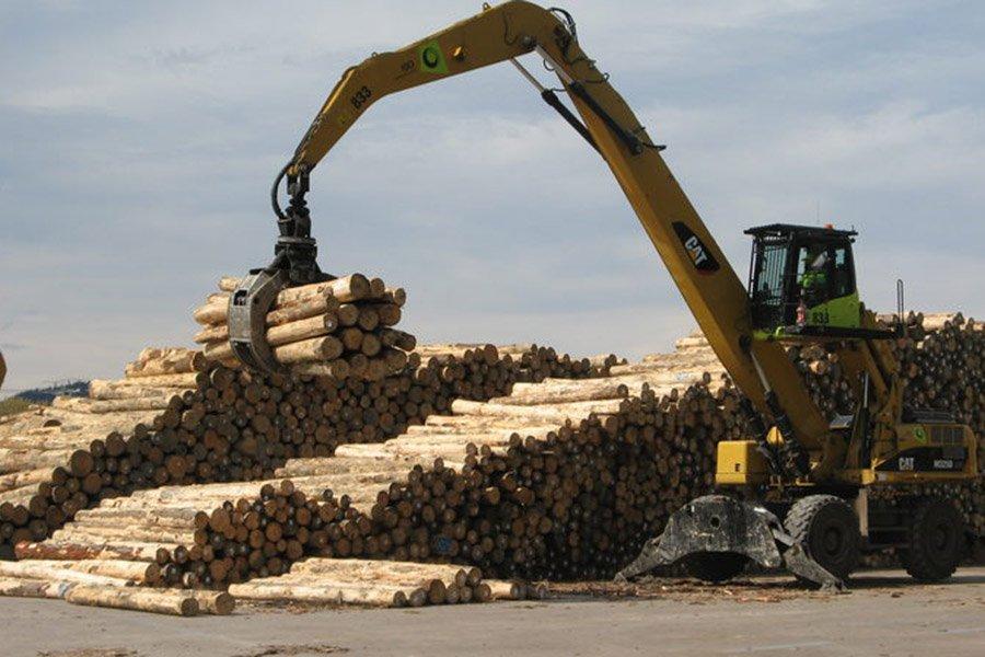 Новая Зеландия: экспорт круглого леса в апреле резко упал