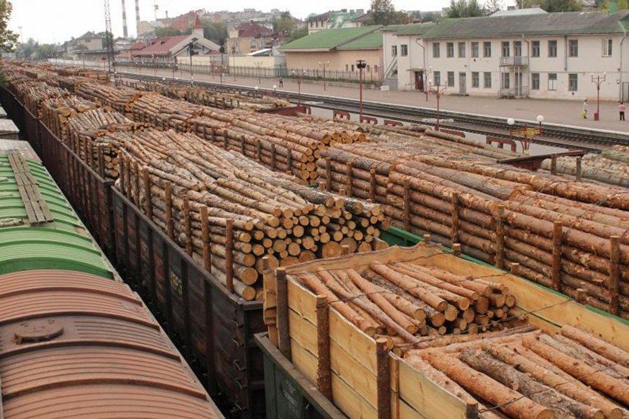 Рекордное снижение экспорта необработанной древесины из России