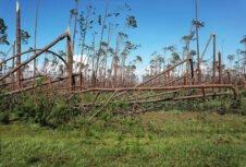 Объявлен фонд помощи пострадавшим от урагана «Майкл» на сумму 380 млн долларов