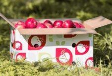 Cascades разработала новую линейку упаковочной продукции Cascades Fresh
