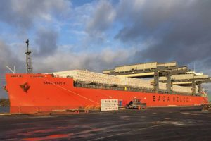 Ожидается, что китайский импорт пиломатериалов из стран Северной Европы превысит импорт из Канады