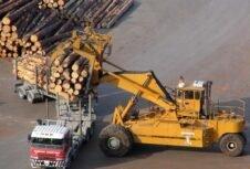 Опасения по поводу эволюции спроса на круглые лесоматериалы в Китае в среднесрочной перспективе