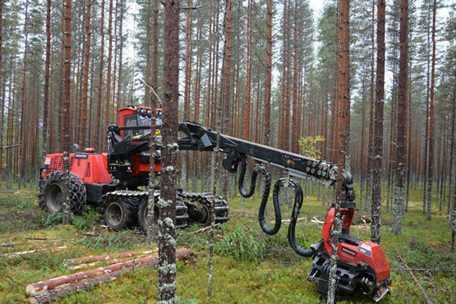 В апреле 2020 г. Финляндия сократила заготовку древесины на 29%