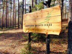 Версия: сделки с древесиной Latvijas valsts meži проверит Госполиция и KNAB