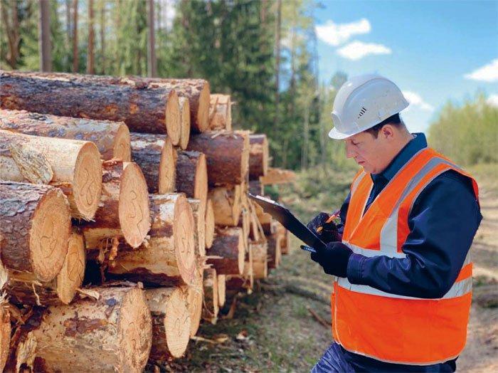 Максим ЗУБКО: «К концу сентября все лесхозы отрасли присоединятся к системе ЕГАИС»