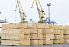 Спрос на северную российскую еловую древесину на европейских рынках рос до конца июня