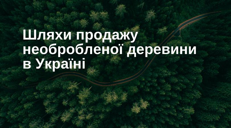 Шляхи продажу необробленої деревини в Україні.
