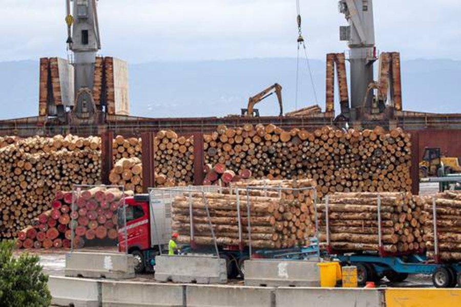 Цены на круглые лесоматериалы в Новой Зеландии снижаются, и в августе они могут еще больше упасть