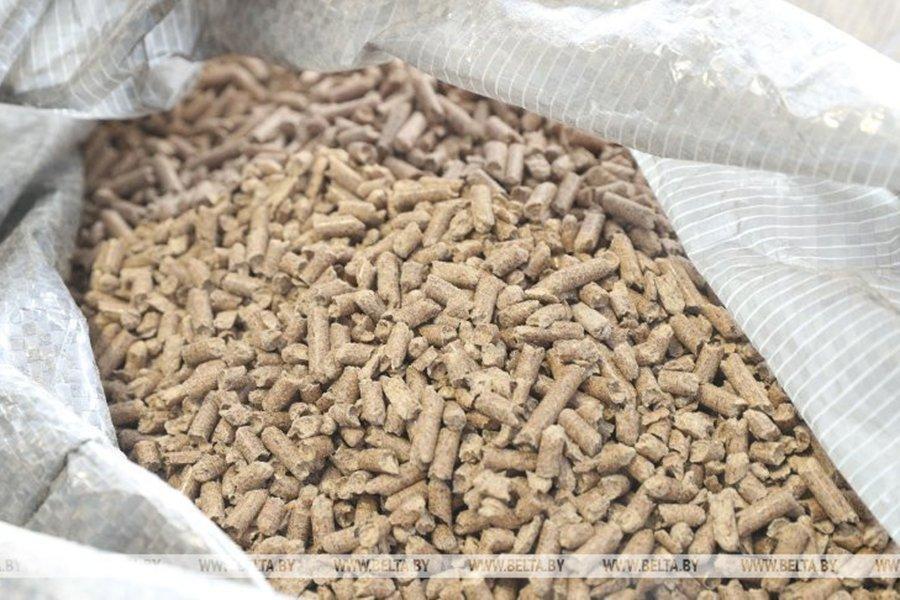 БУТБ вводит специализированные экспортные торги древесным топливом