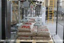Белорусские пеллеты отправятся на европейский рынок — Министерство лесного хозяйства