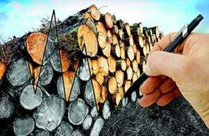 Ринок деревини: в очікуванні змін