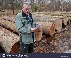 Проф. др. Губерт Браун: Пропозиції щодо впровадження ефективного державного лісового господарства в Україні (Презентация)