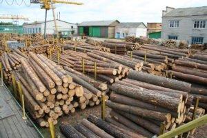 Украина: цены на хвойные круглые лесоматериалы в 3 квартале начали подниматься